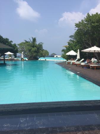 Pool - Adaaran Select Meedhupparu Photo