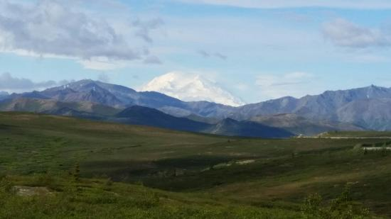 Trapper Creek, AK: 20150609_095053_large.jpg