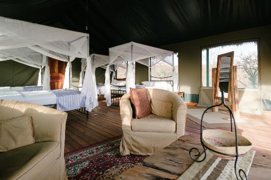 Ngorongoro Wildcamp: Room view