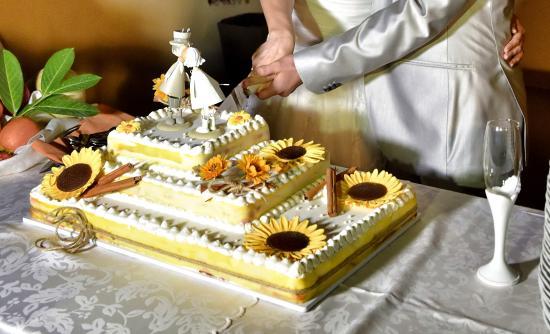 Torte Matrimonio Girasoli : Torta girasole picture of agriturismo il murello medicina