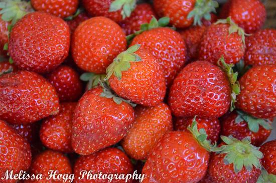 Ballarat Bridge Mall Farmers Market - Fresh Strawberries