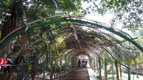 Qiushuishan Park: 20160209_121754_large.jpg