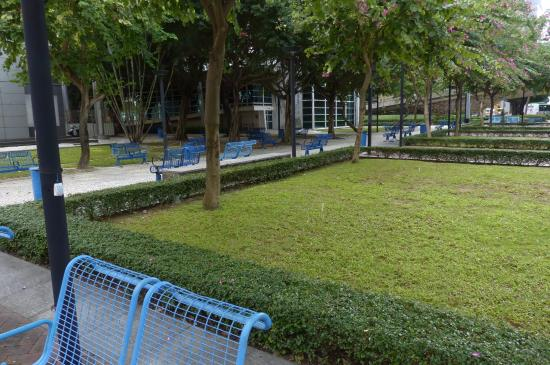 Dr. Carlos d'Assumpcao Park : Commander Ho Yin Parque in Macau - seating area