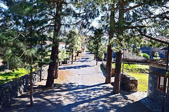 Santiago del Teide, Spanyol: La Casona del Patio 14