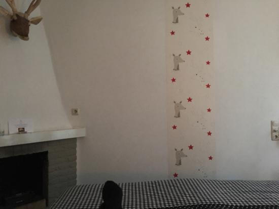 Nunspeet, Nederländerna: Leuk haardvuur, alleen jammer van het brandalarm Lelijk strook behang op de muur!