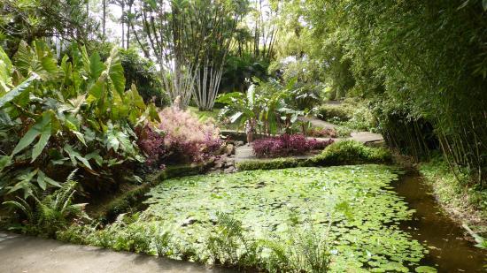 Jardin de Balata : aménagements agréables