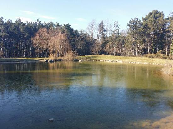 Pirsinella Park