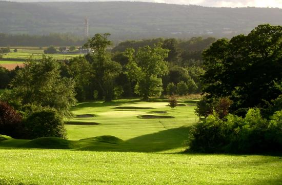 County Carlow, Ireland: 8th Hole