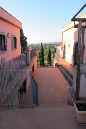 Agriturismo Tenuta San Michele: Certaines chambres sont en retrait par rapport à la piscine