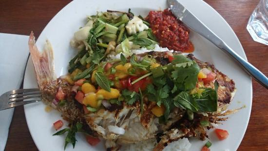 Blueys Beach, Australia: Grilled schnapper from Kambali cafe