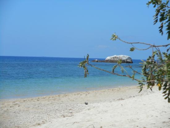 Fitzroy Island, Australia: Beach!!
