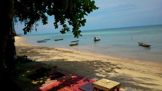 haad chao phao resort prices campground reviews ko pha ngan rh tripadvisor com