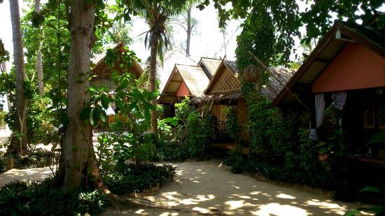 haad chao phao resort prices campground reviews ko pha ngan rh tripadvisor com