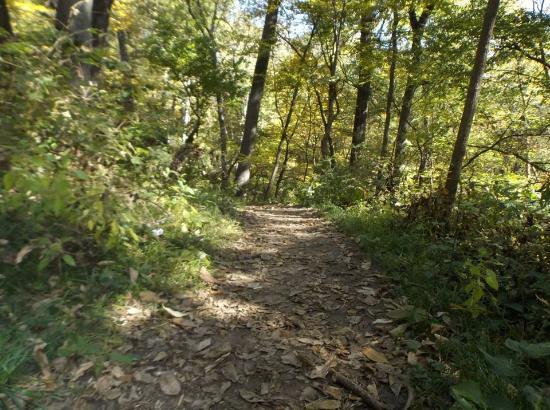 Bellevue, NE: Miles of woodchip trails.