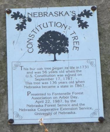 Bellevue, NE: History with dendrology