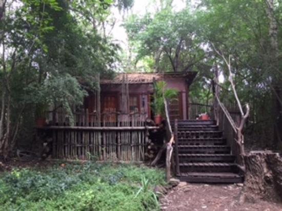 La Provence D'Afrique: Forest Spa