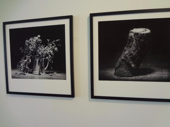 UFPR - Federal University: Exposição de fotos e artes dentro da UFPR