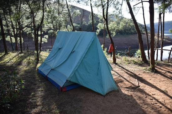 Destiny Farmstay tent stay & tent stay - Picture of Destiny Farmstay Ooty - TripAdvisor