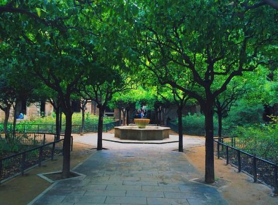 Jardins de Rubió i Lluch