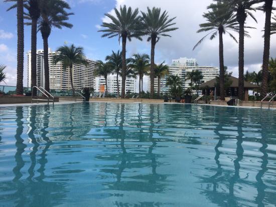 Flamingo South Beach / Calico Apartments: photo0.jpg