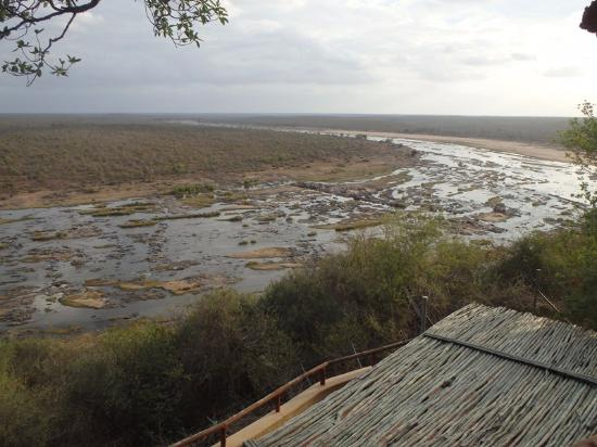 Olifants Rest Camp: Mugg & Bean overlooking river