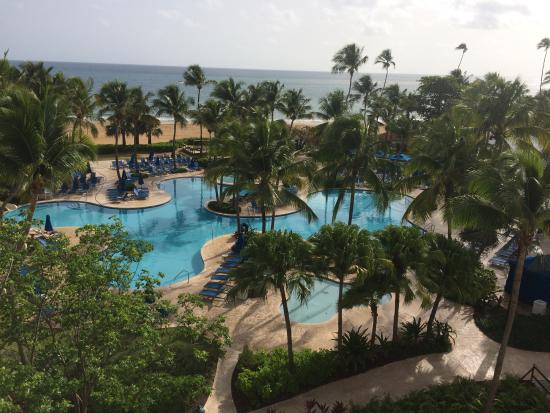 vacaciones picture of wyndham grand rio mar puerto rico golf rh tripadvisor com