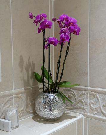 The George Of Stamford: Nice Flowers Adorning The Bathroom.