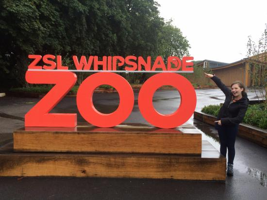 Dunstable, UK: Whipsnade Zoo