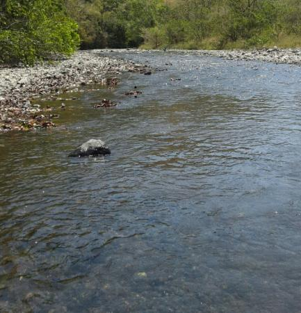 Cambutal, Панама: 20160207_184854_large.jpg