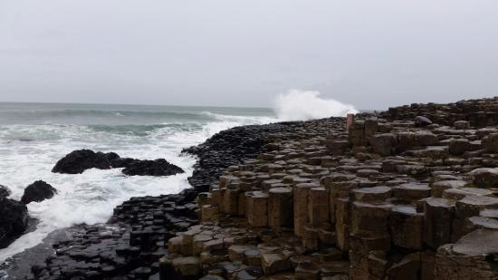 Cottesmore Bed and Breakfast : Giant causeway