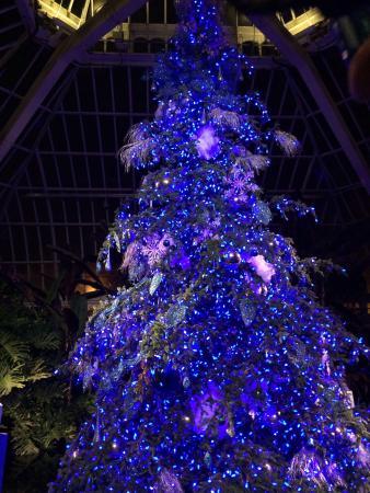 Phipps Conservatory: Bellissimo durante il periodo di Natale