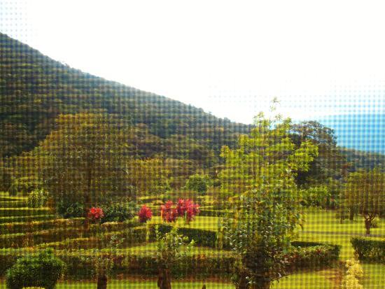 Bijagua de Upala, Costa Rica: Vista de la habitación