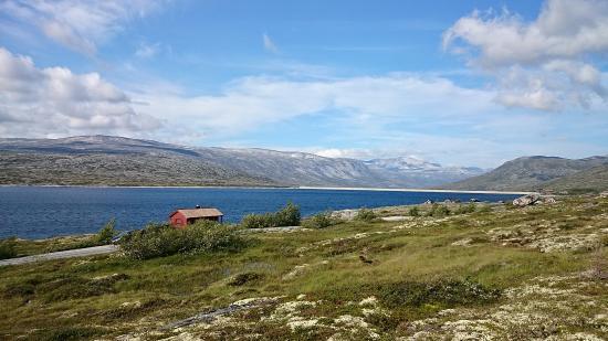 aursjøen kart Aursjovegen   Bild von Aursjovegen Road, Møre og Romsdal   TripAdvisor aursjøen kart