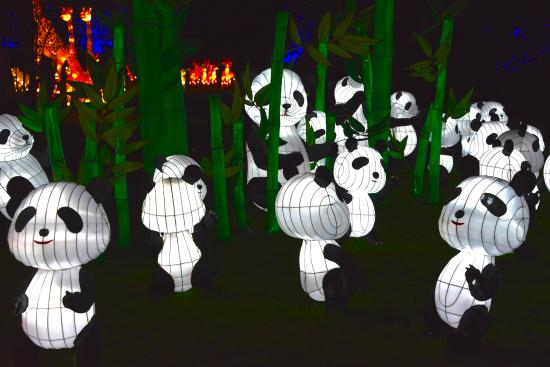 Chiswick House: Magical Lantern Festival example