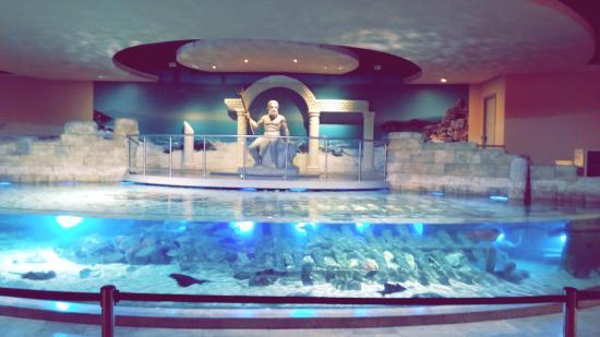 Istanbul Aquarium : Picture of Istanbul Aquarium, Istanbul