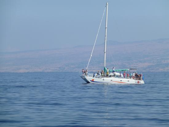 Waikoloa, HI: the second boat that went out at sea with us. Nice catamaran.