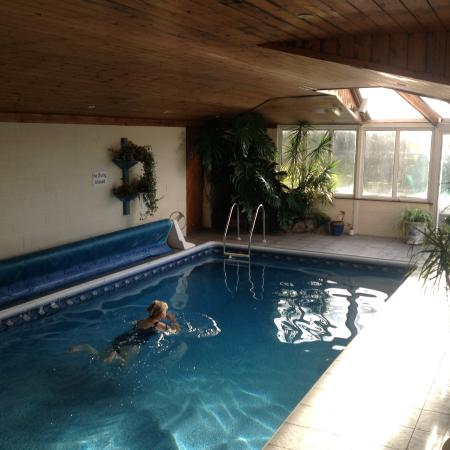 Southview Guest House: A relaxing swim in the heated pool.