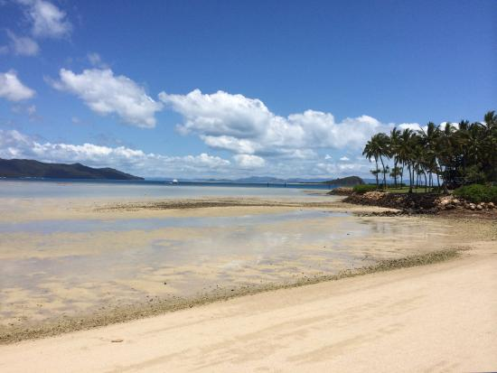 Hayman Island, Australië: Not possible to swim most of the day...