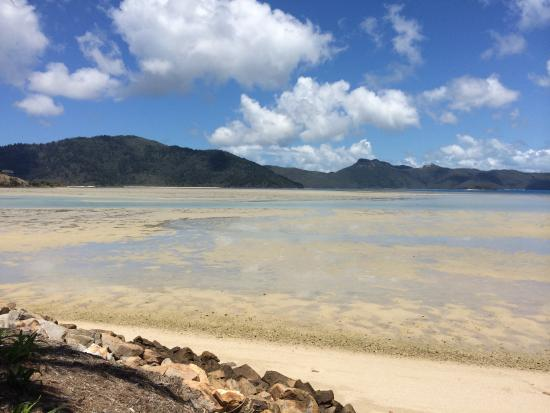 Hayman Island, Australië: Muddy...