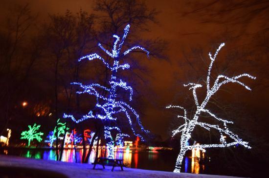 Dufferin islands park lit trees