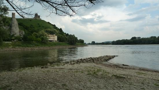 Burg Devin (Thebener Burg): The confluence of Morava river (left) and Danube (right) bellow Devín caste - taken from Austria