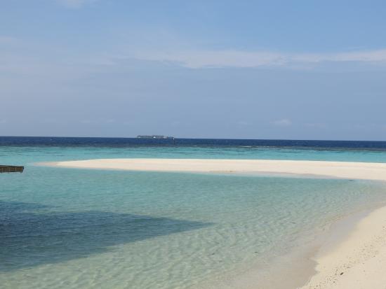 Beach - Amari Havodda Maldives Photo