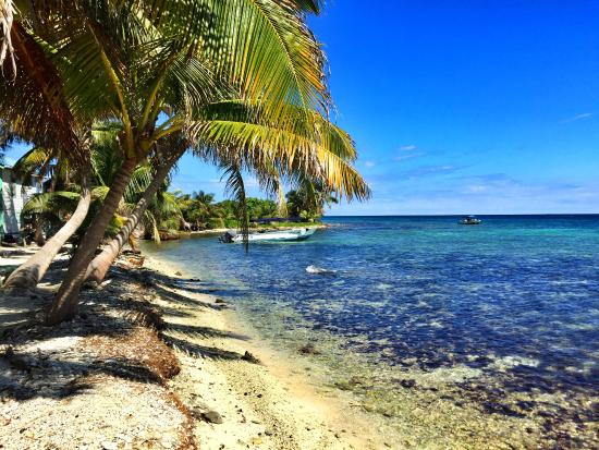 Placencia, Belice: looking North by Northeast
