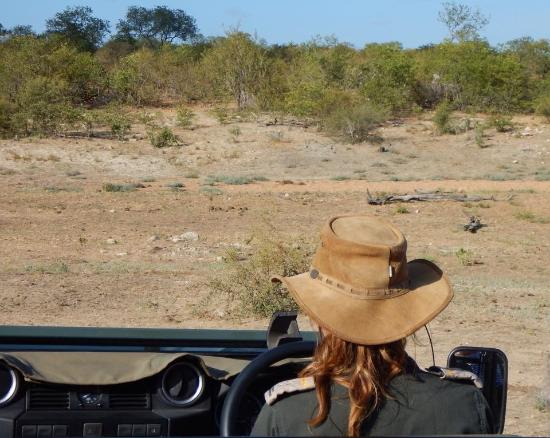 Timbavati Private Nature Reserve, Zuid-Afrika: on our game drive