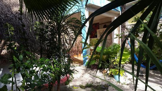 Aerolito Tulum: 20160126_101136_large.jpg