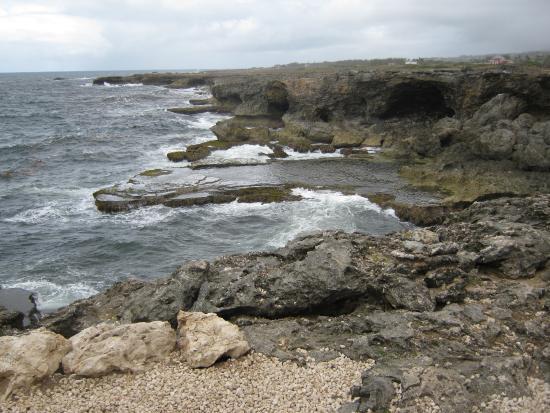 Saint Lucy Parish, Barbados: view of rocky coast 1