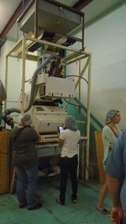Mesilla, NM: One of the various processing machines in the Pistachio harvest & processing