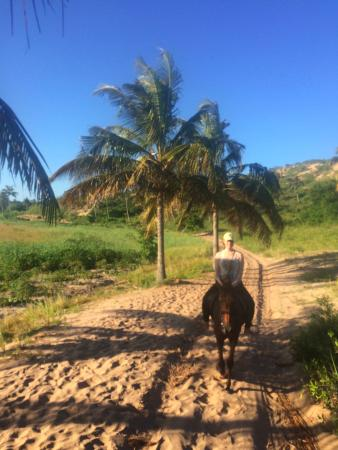 Horseback Riding Tours