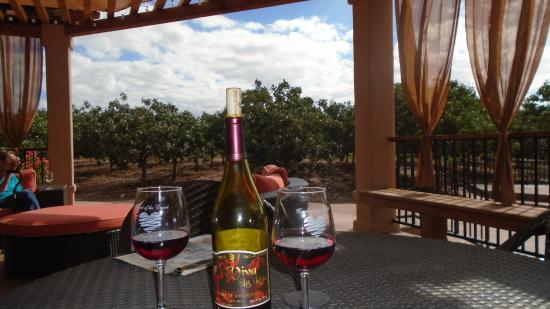 Месилья, Нью-Мексико: Heart of the Desert's wonderful patio. Relax and enjoy their wine!