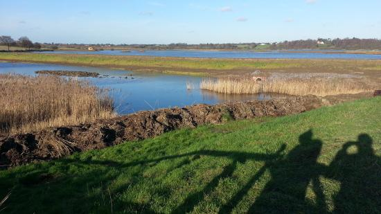 Westleton, UK: Minsmere from the South West